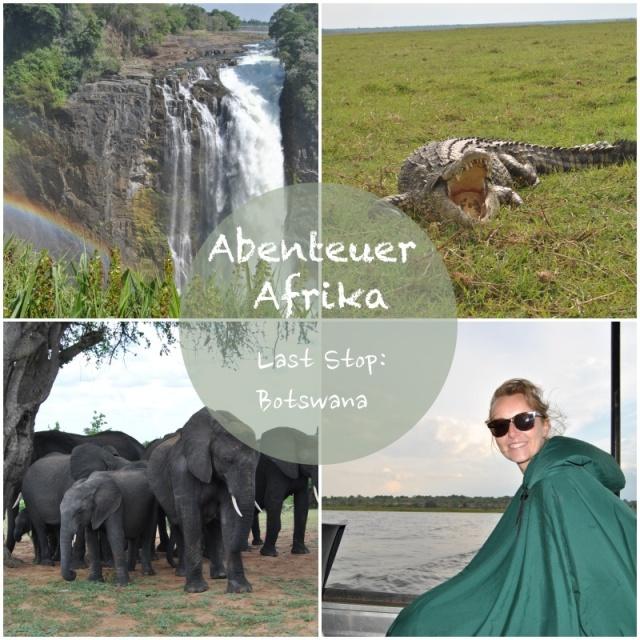 collage afrika 3